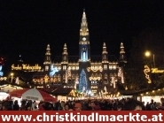 Christkindelmärkte in Wien, Christkindlmarkt am Wiener Rathausplatz